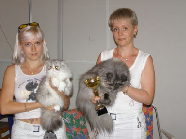 Yalta 2006 Roseland's Mishele 1st place, Charlotte-Beatrice of Starbabies 2nd place in Persian Show